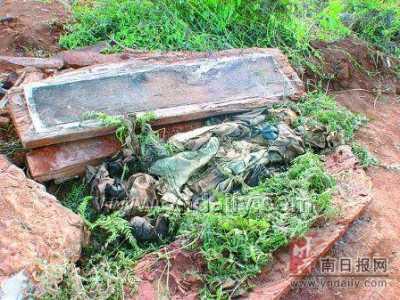 中国工地挖到最大的蛇 辽宁挖出大蛇