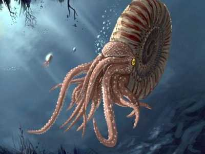 10种已灭绝的史前远古巨兽 史前巨兽