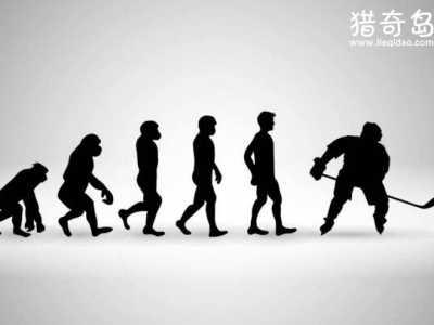 其实在人类起源中就能知道答案 人类起源的猜想