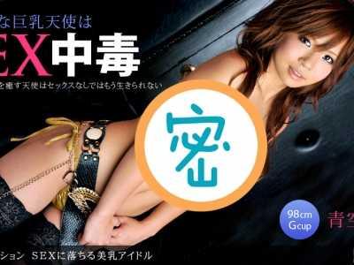 2010年12月15日发布 青空小夏番号1pondo-121510 987封面